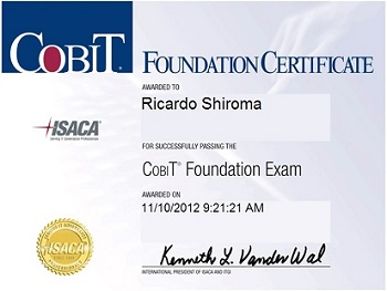 COBIT Foundation v4.1